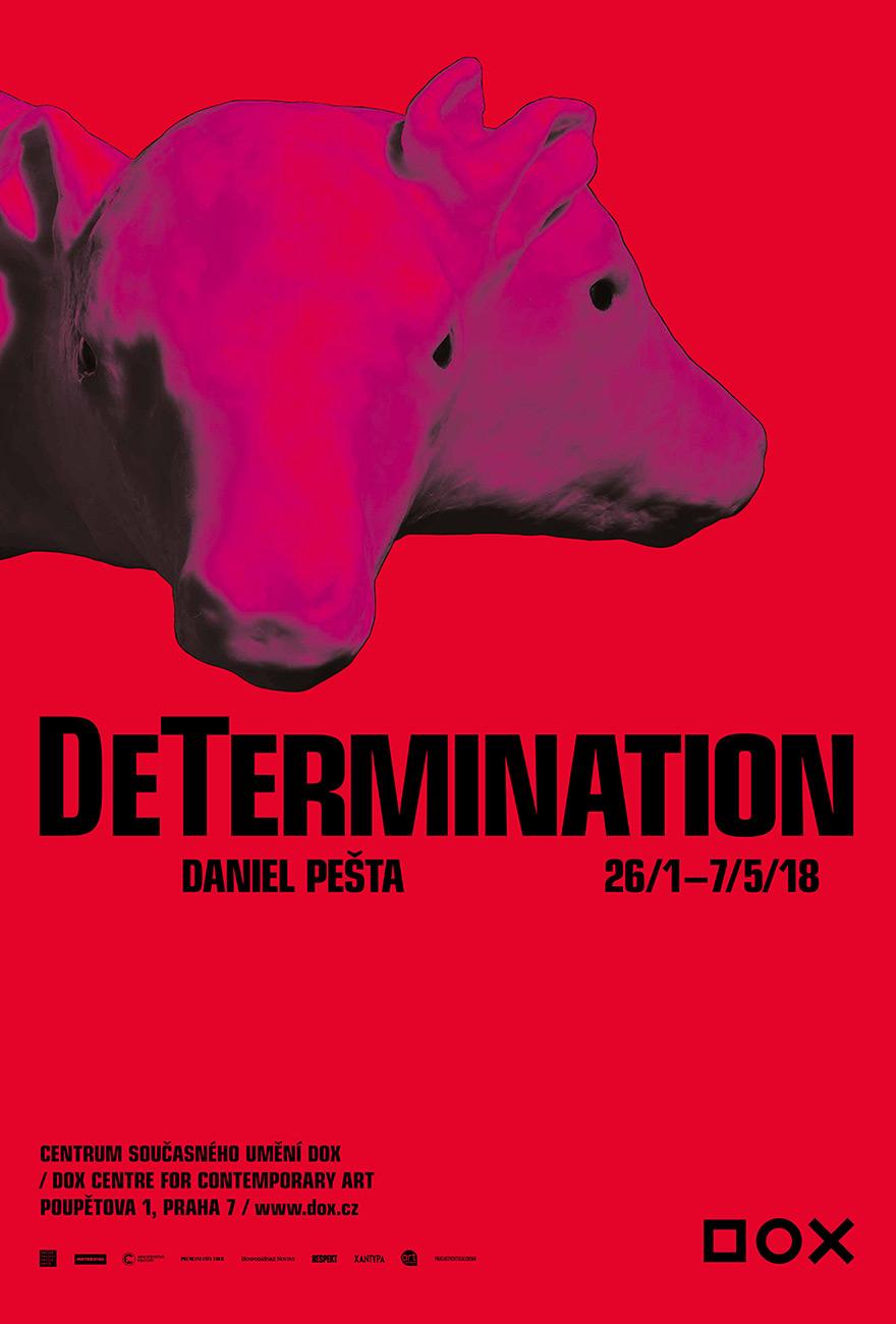determination dox 26 1 7 5 2018 daniel pešta